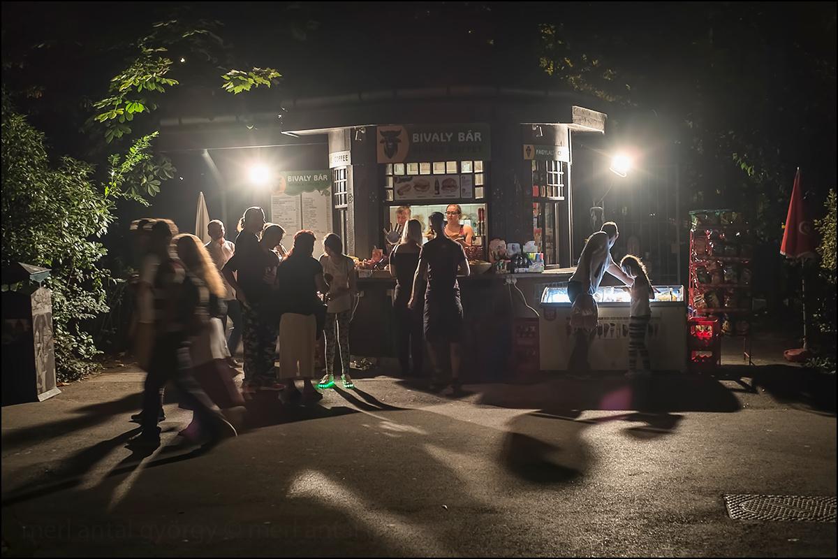 2017.08.25. Állatkertek éjszakája