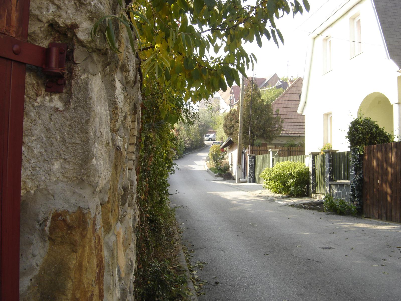 2011.11.Budaörsi ősz