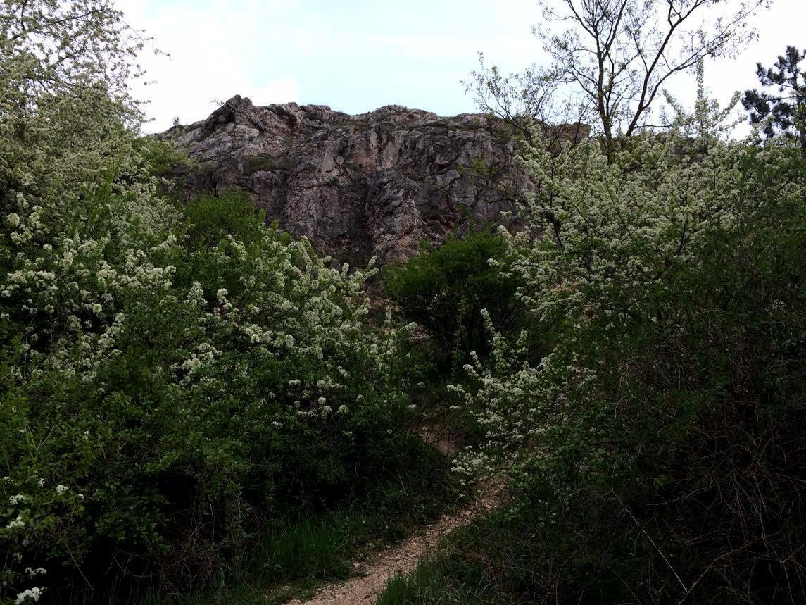 Budaörs - Odvas hegy