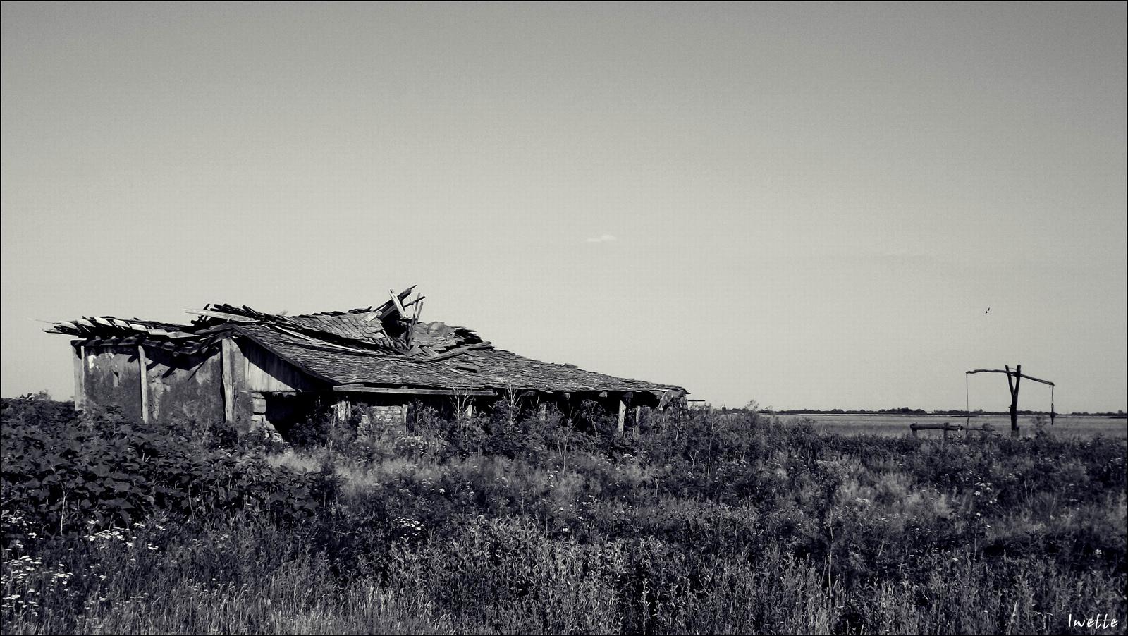 Kihalt tanyavilág