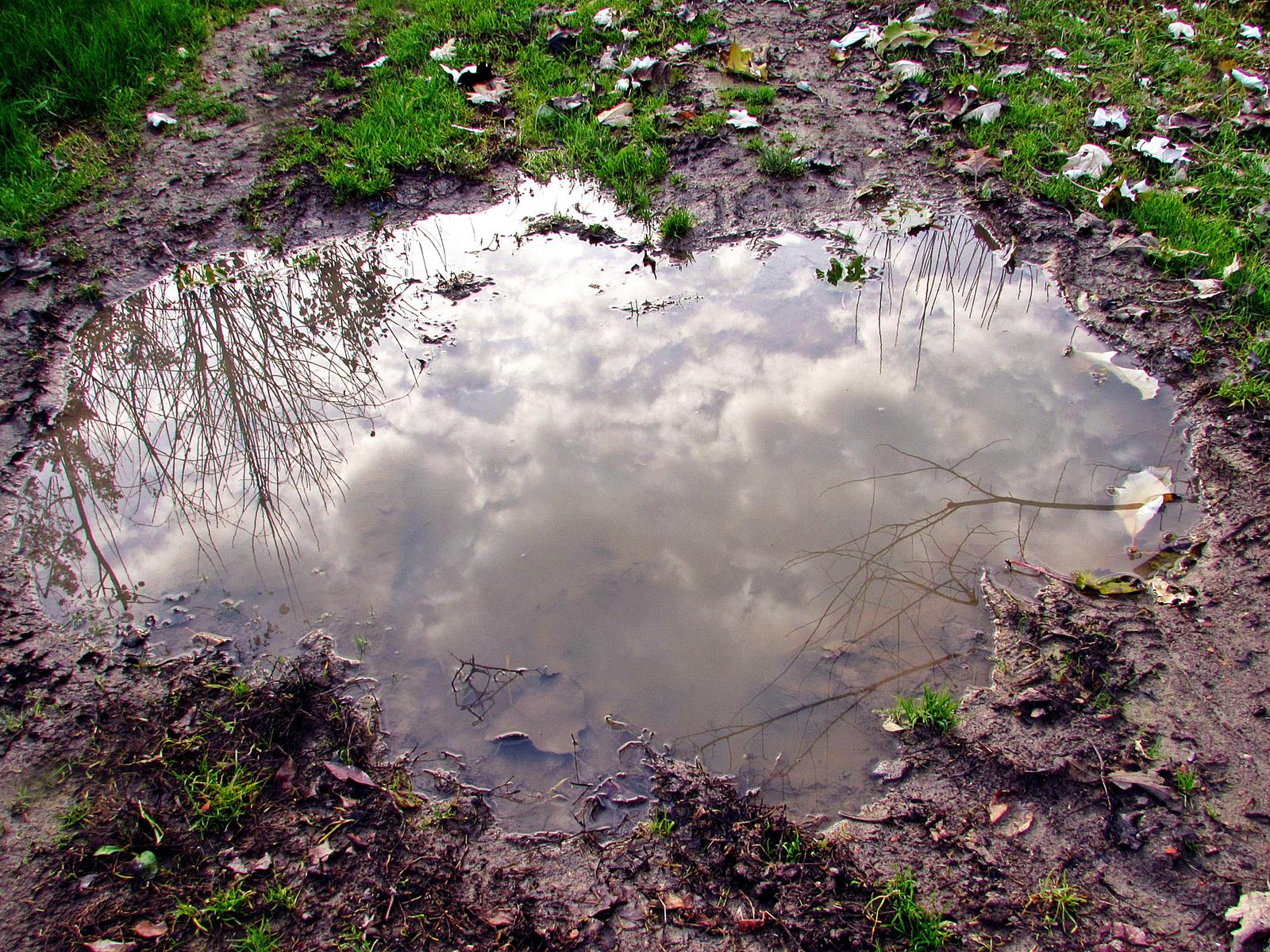 felhők a tócsában