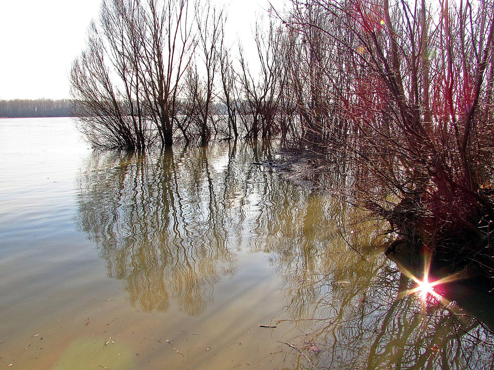Dunai tükör