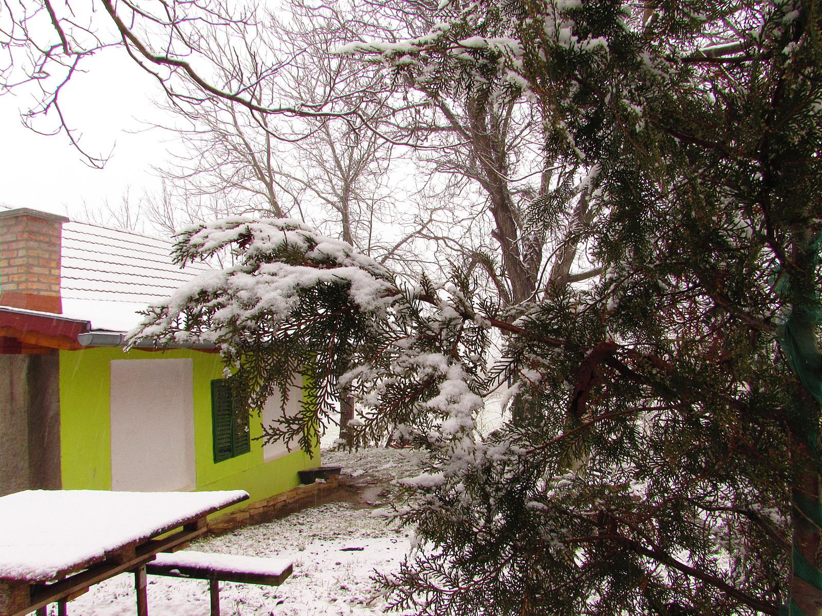 megjött a tél !