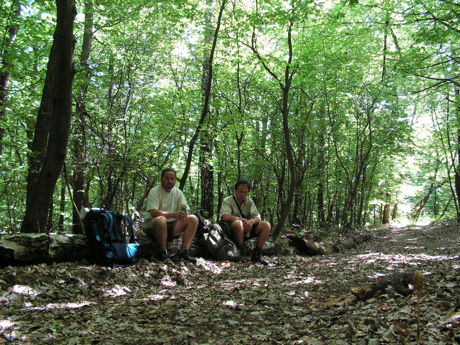 406 Pihenő Tornabarakony felé a Szalonnai-hegységben