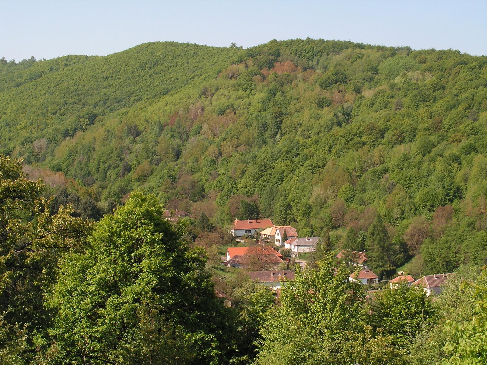 337 Nagyhuta házai a völgyben