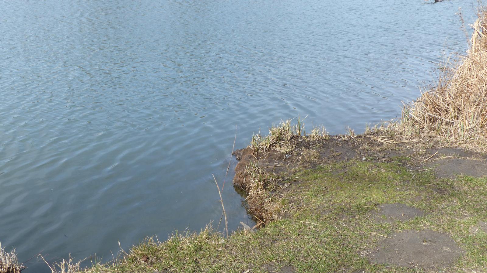 Fót, a Fóti tó, SzG3