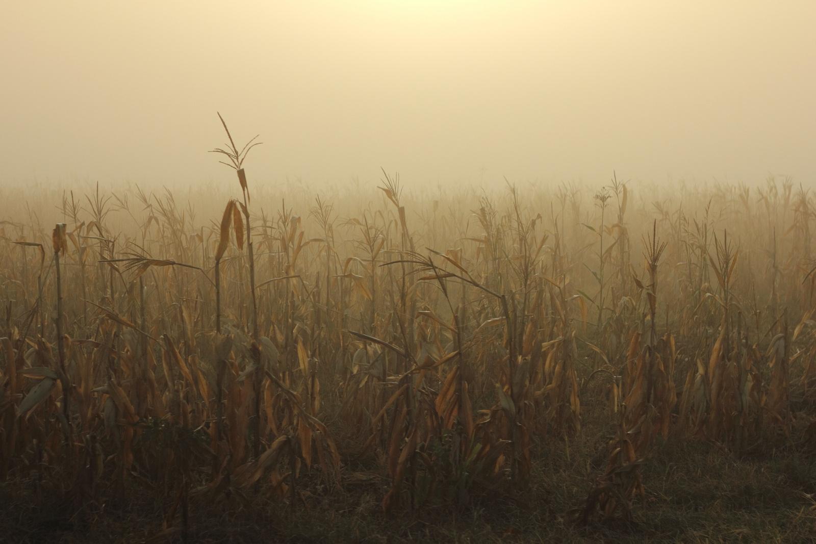 októberi csend