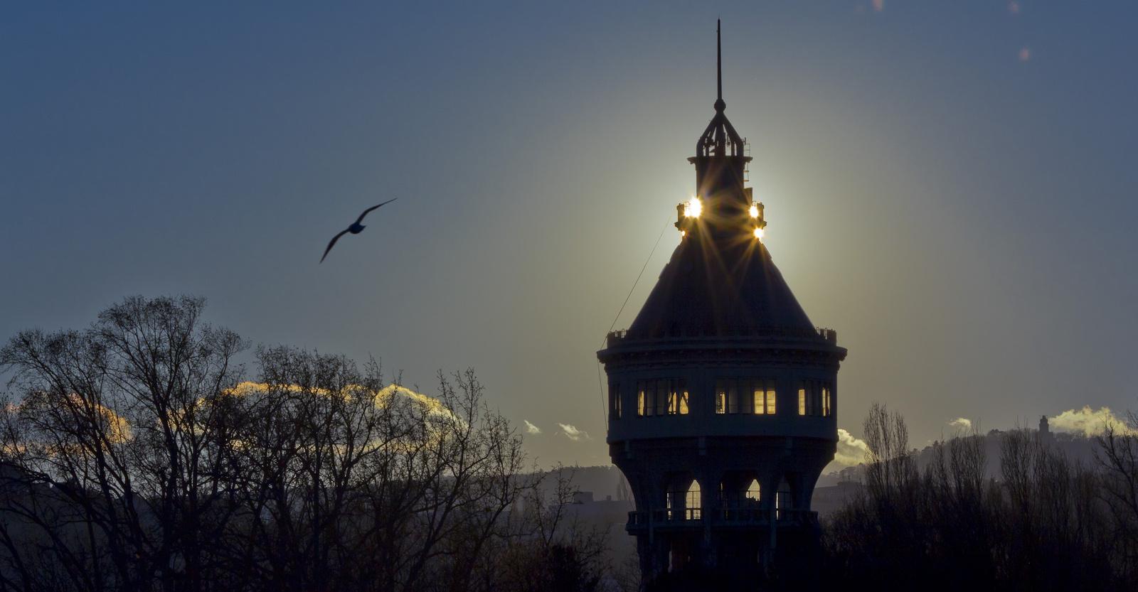 Margitszigeti víztorony