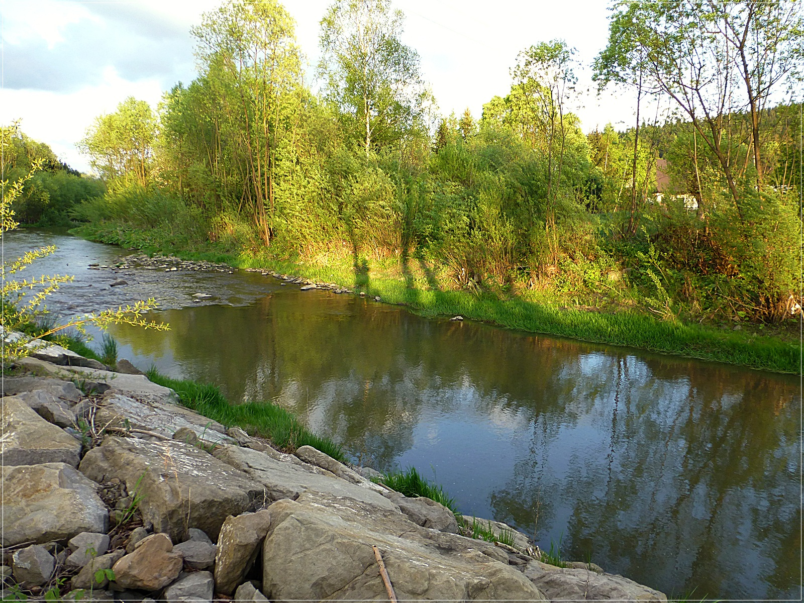 folyópart