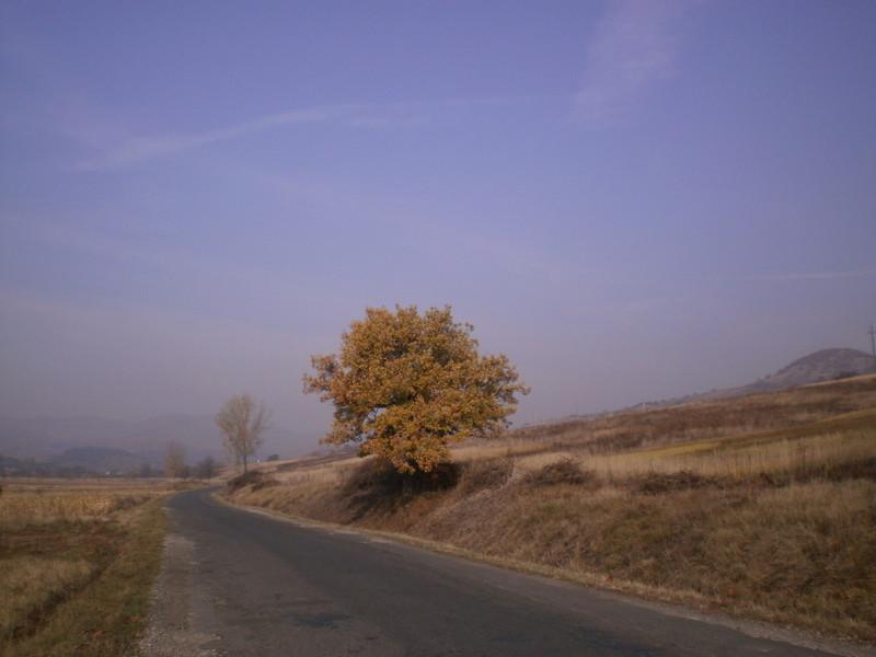 Borsodi táj ősszel