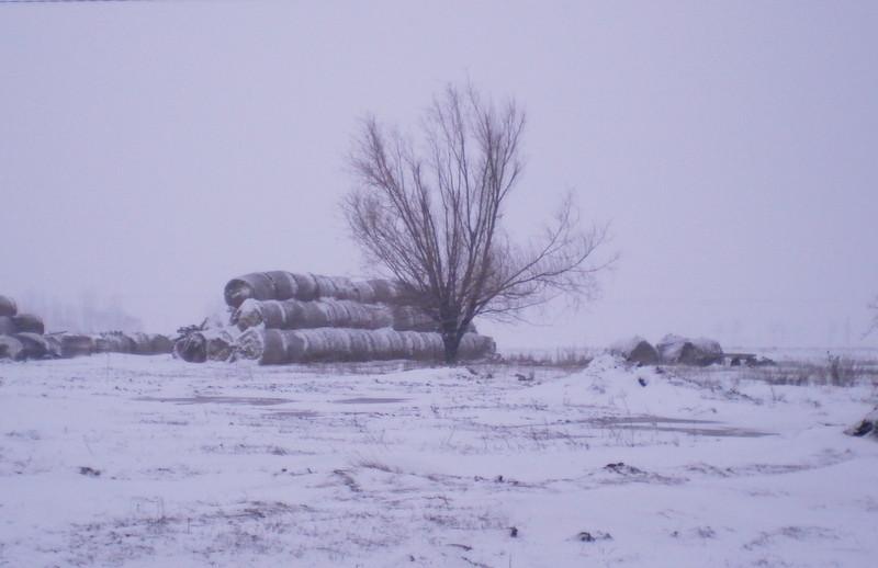 Tél a tanyán