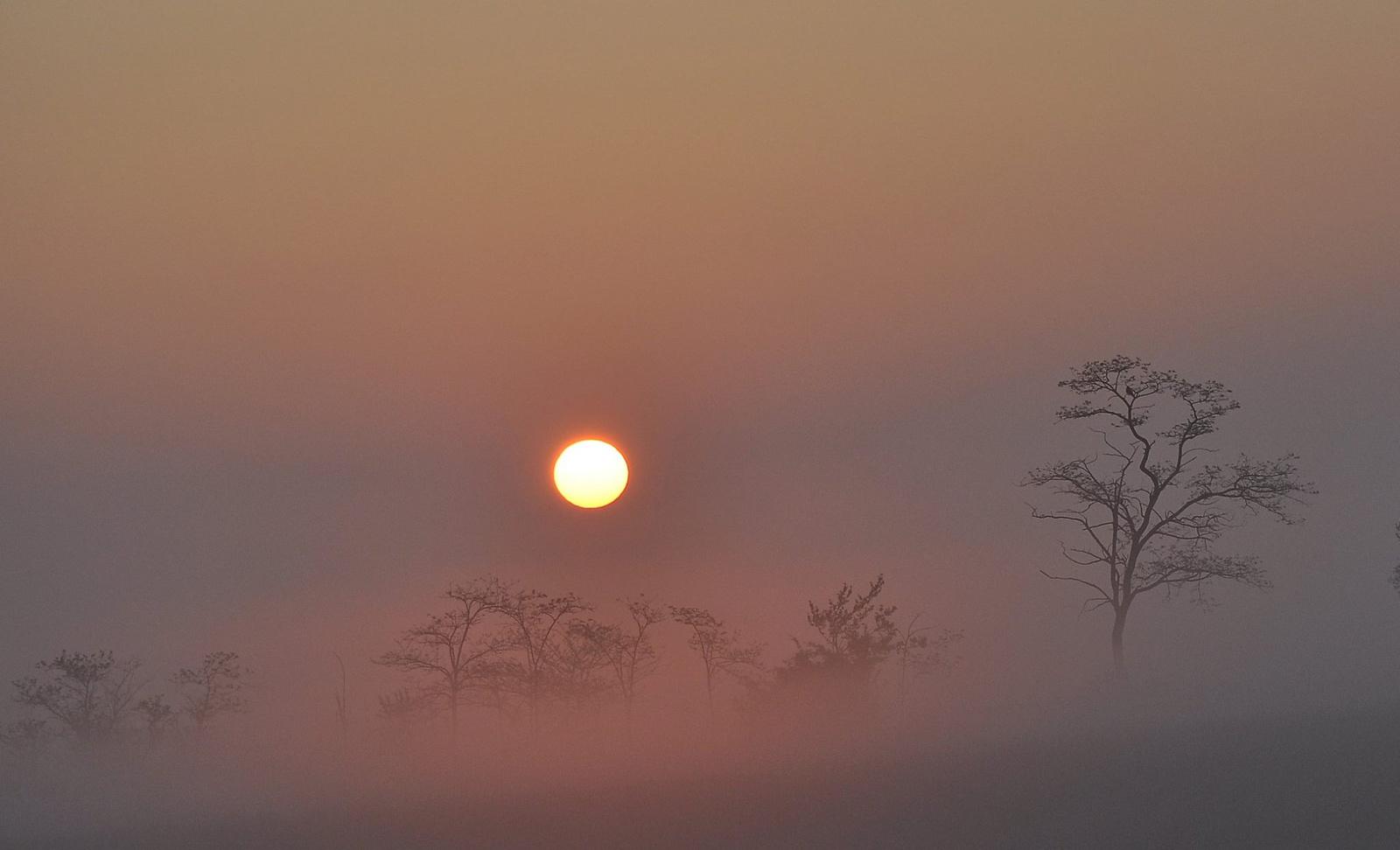 Ködös napkelteBBB