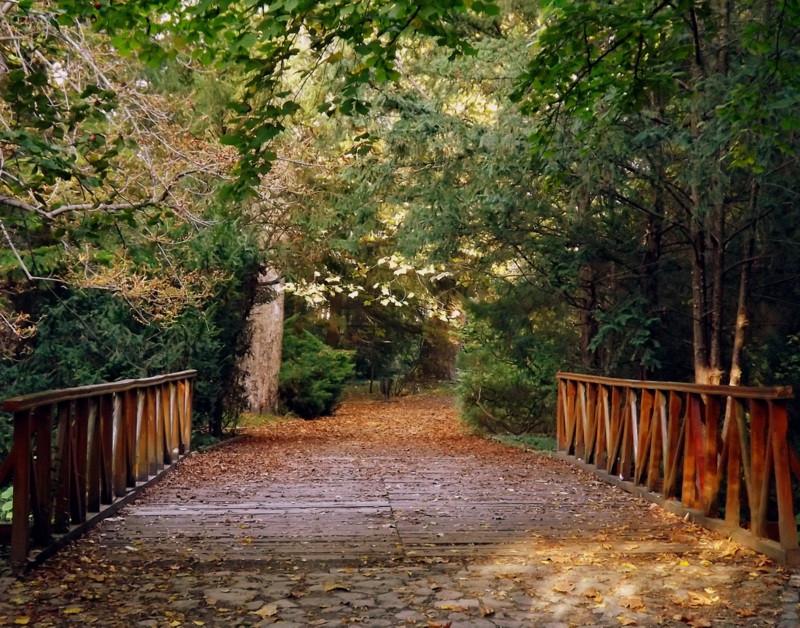 Út az őszbe...