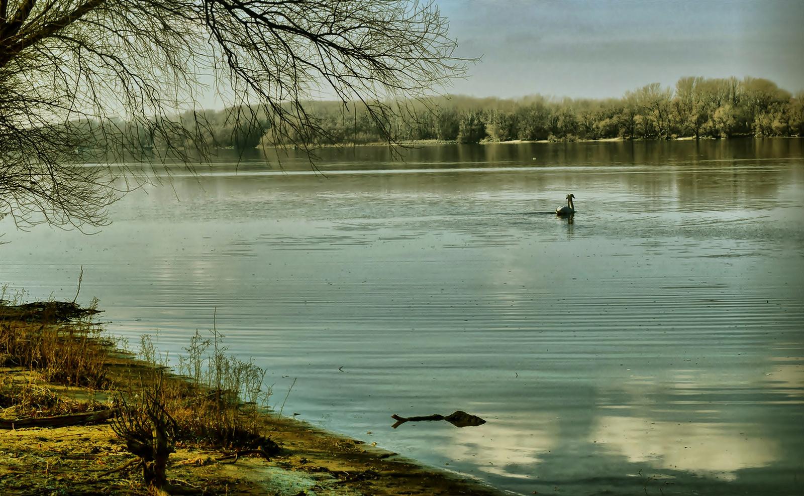A Duna-parton