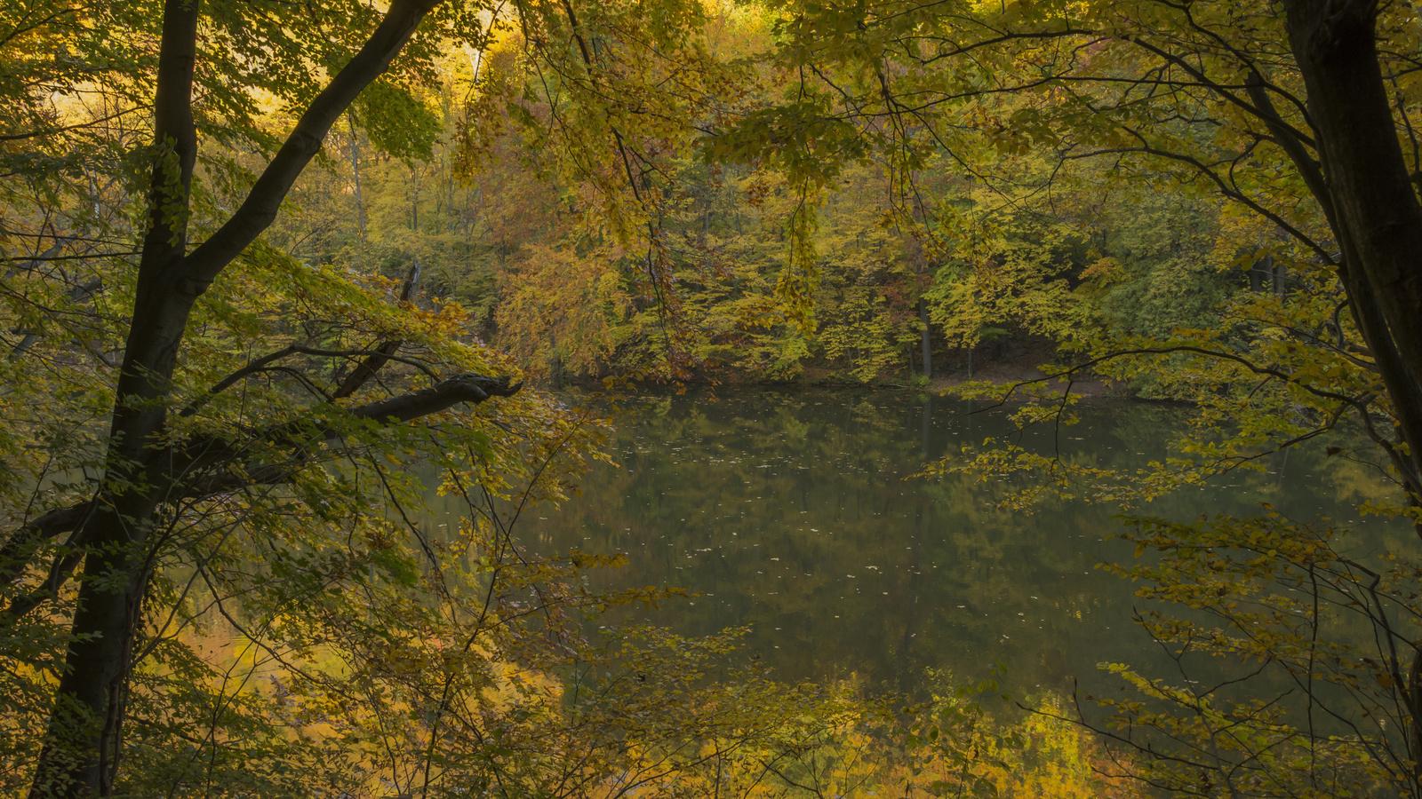 Arany október