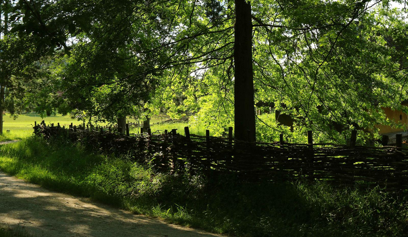 A kerítés