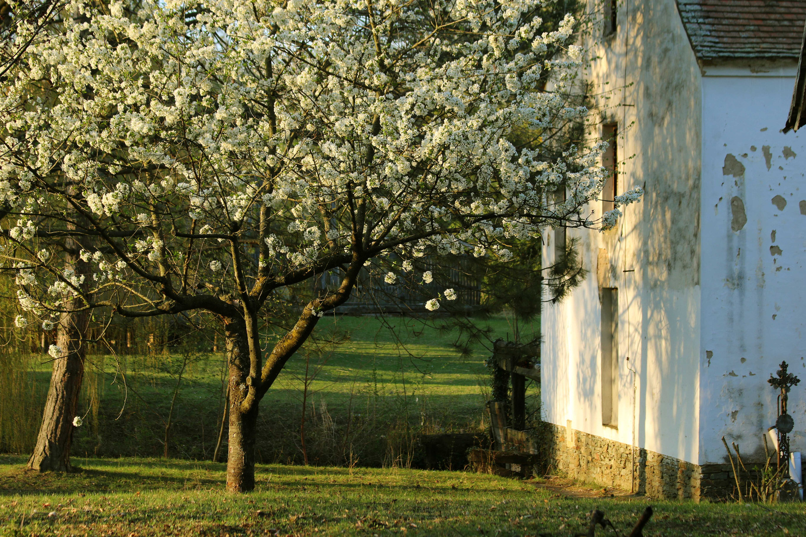 Tavasz a malomnál