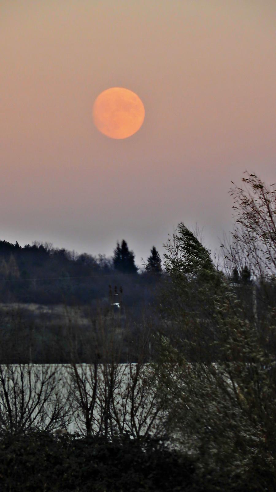 A hatalmas Hold