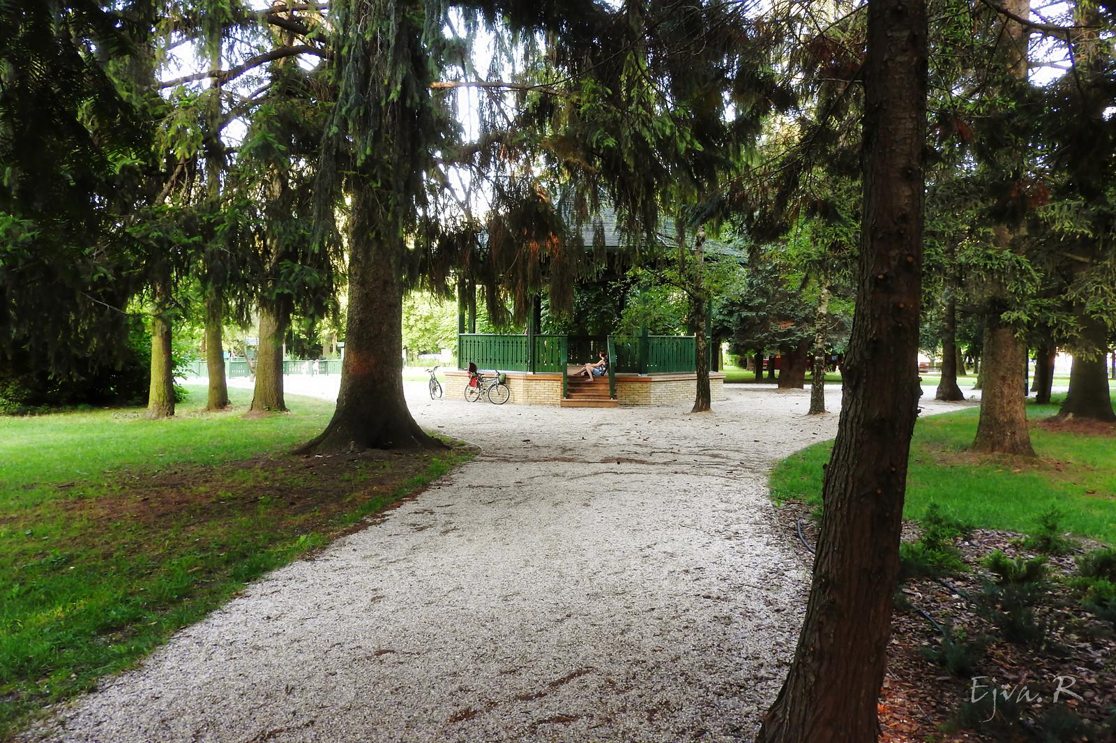 Zenepavilon Park Nyár Fák