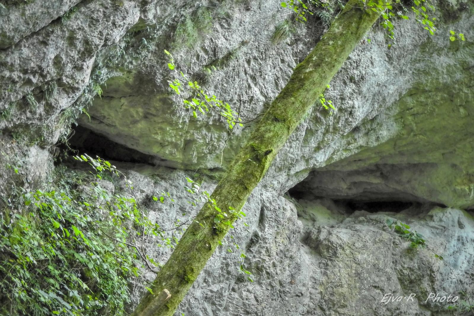 A szikla szeme