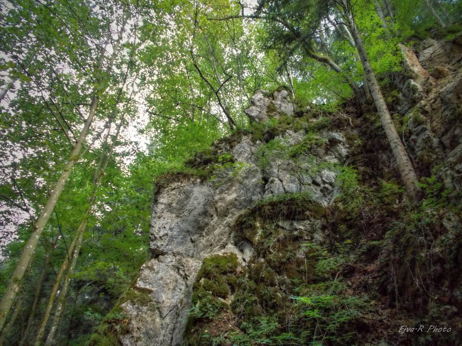 Túra Erdő Szurdok