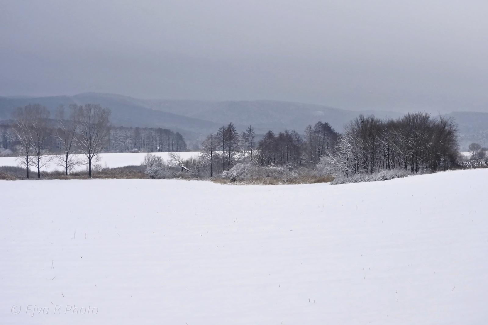 Hó Táj Tél