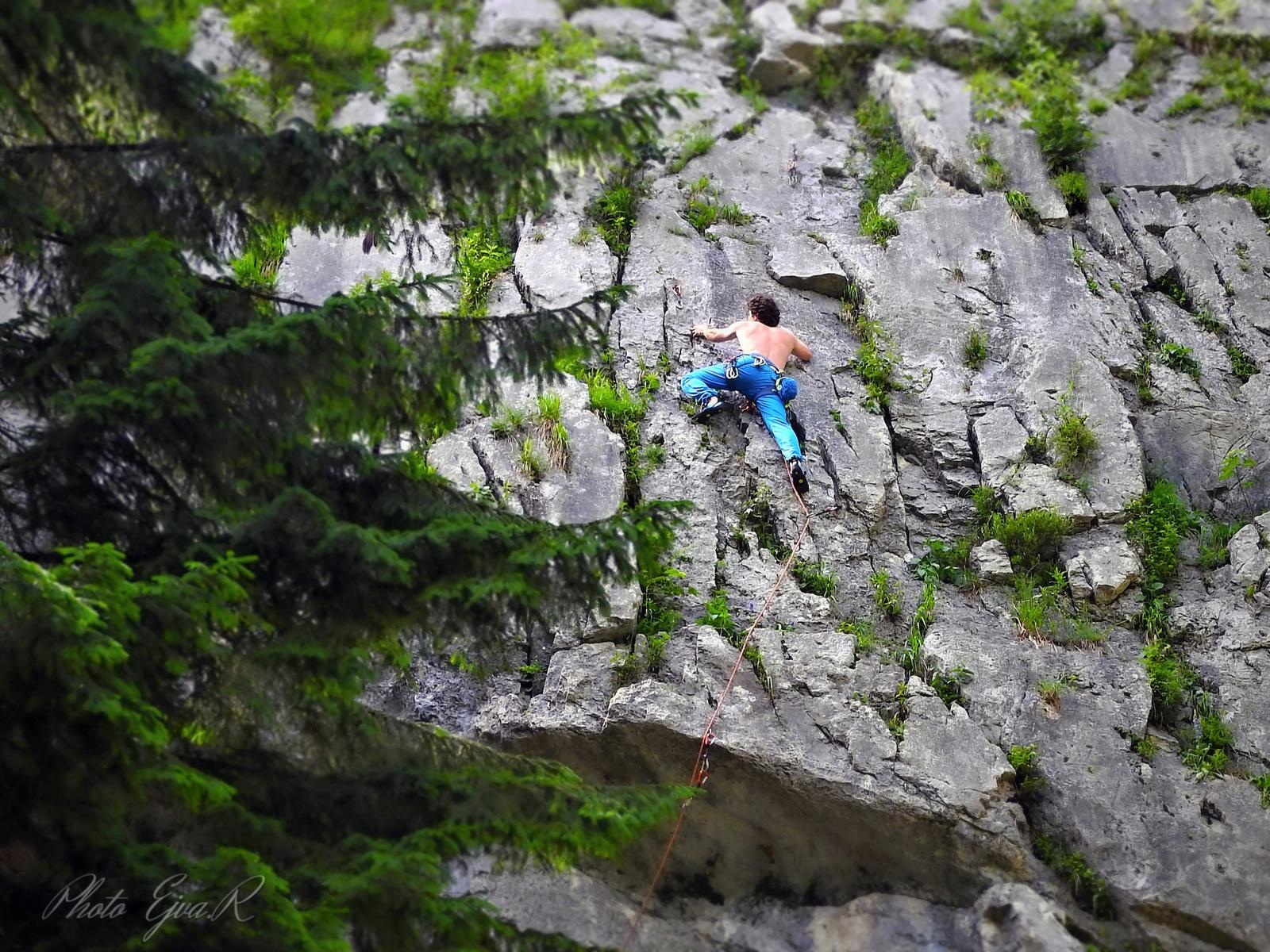 Szabad mászás