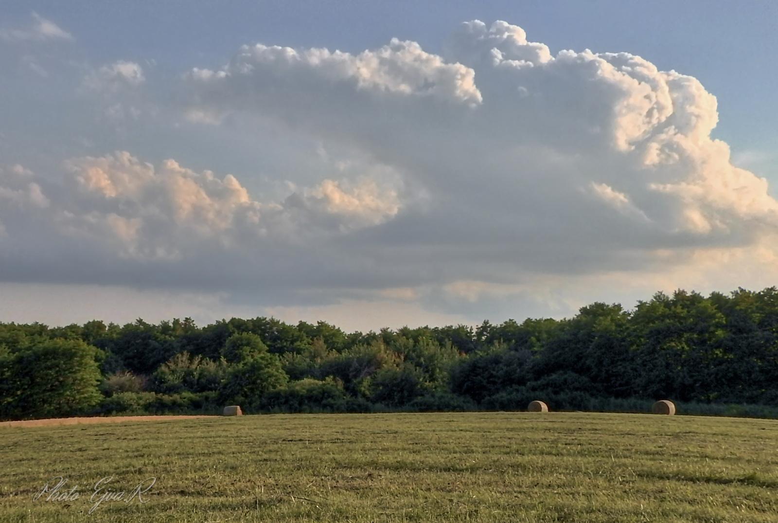 Táj Felhők Nyár