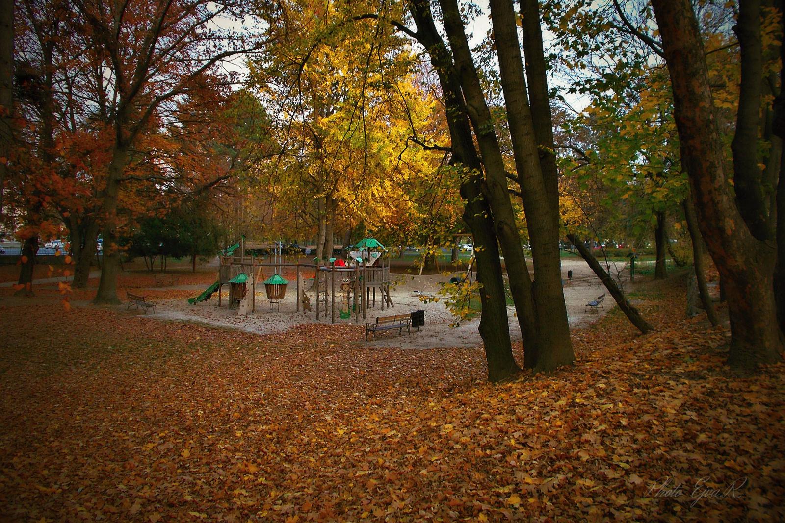 Park Ősz