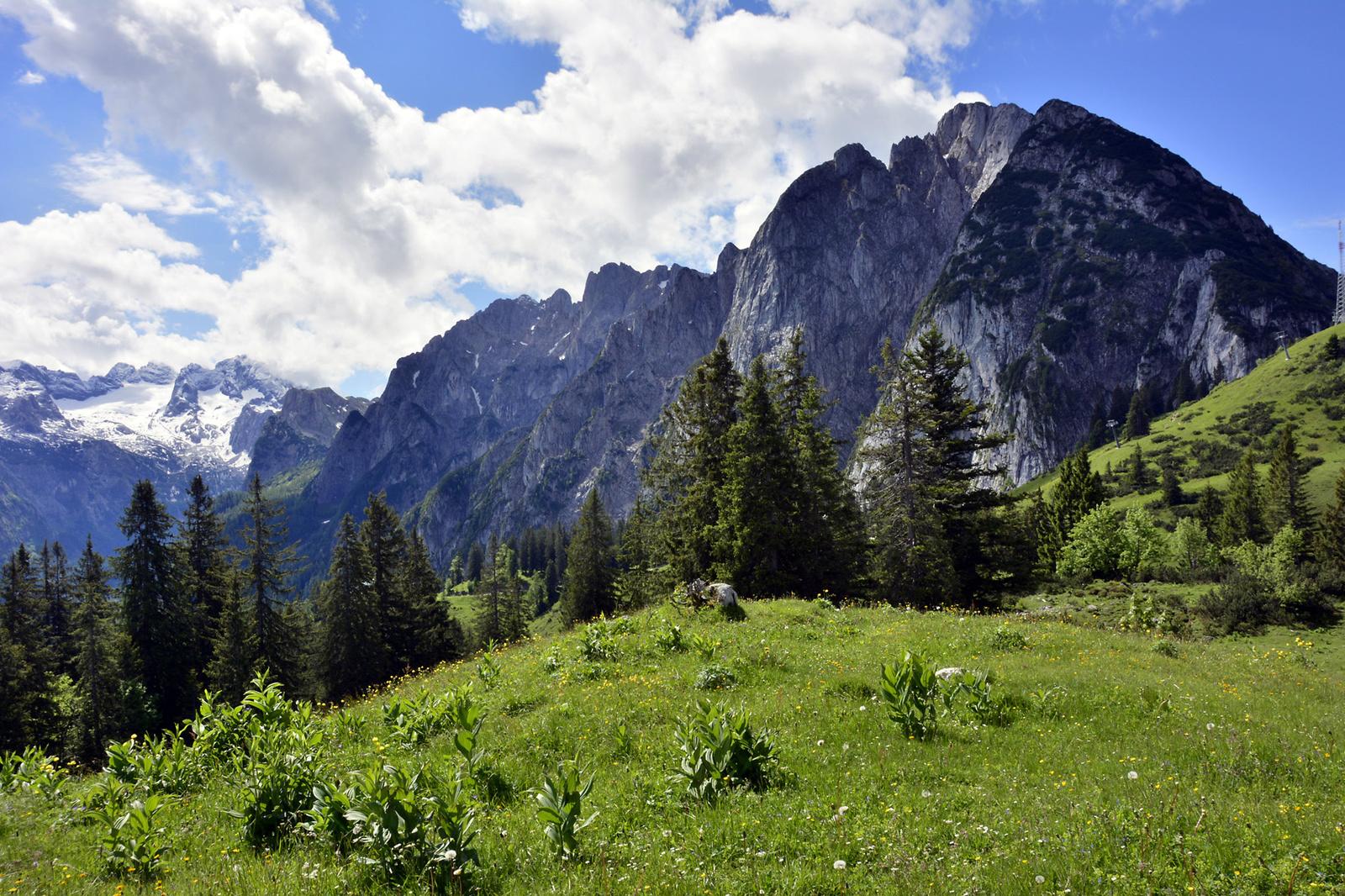 Távolban a Dachsteint