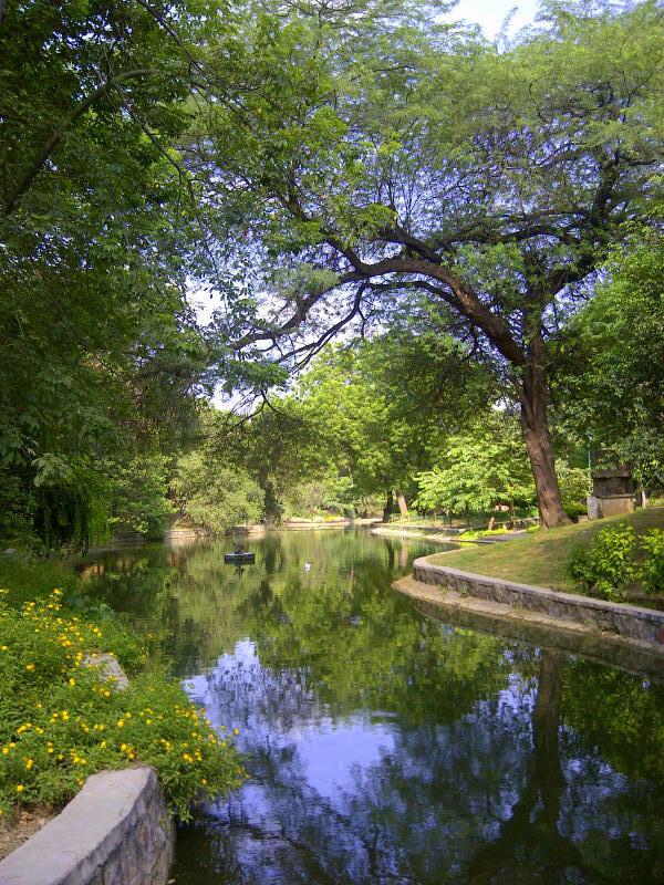 Delhi-Lodhi garden (India)