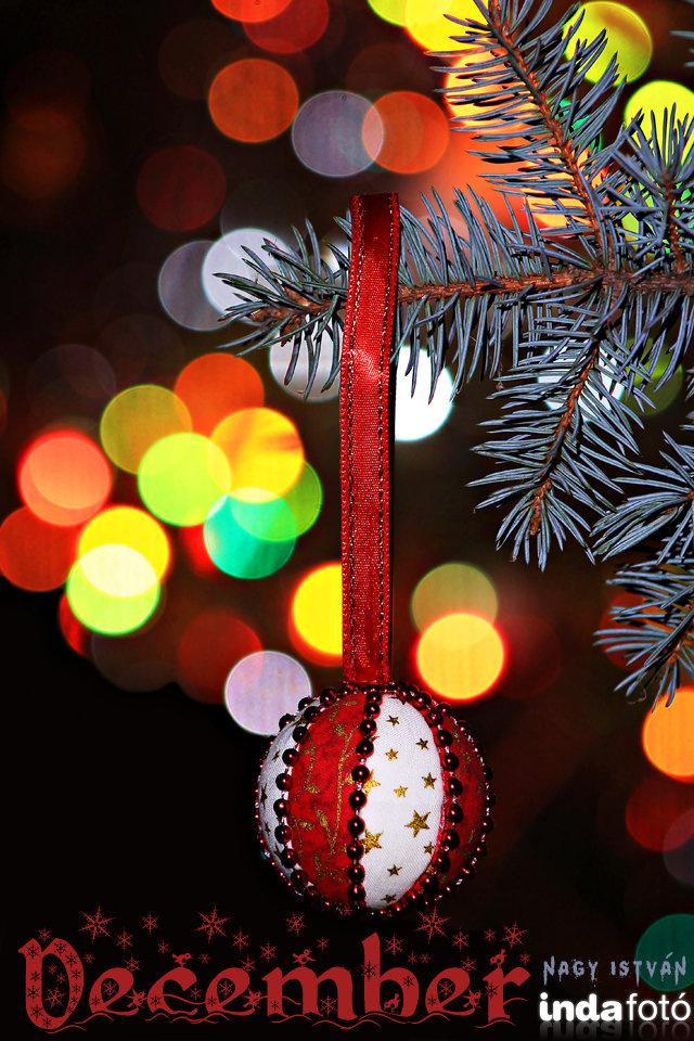 nagy istvan december indafoto 640x960