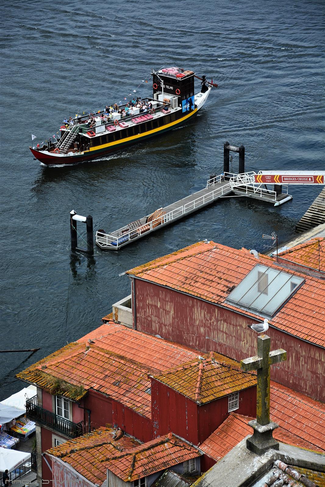 Porto 2018 0764 (2)
