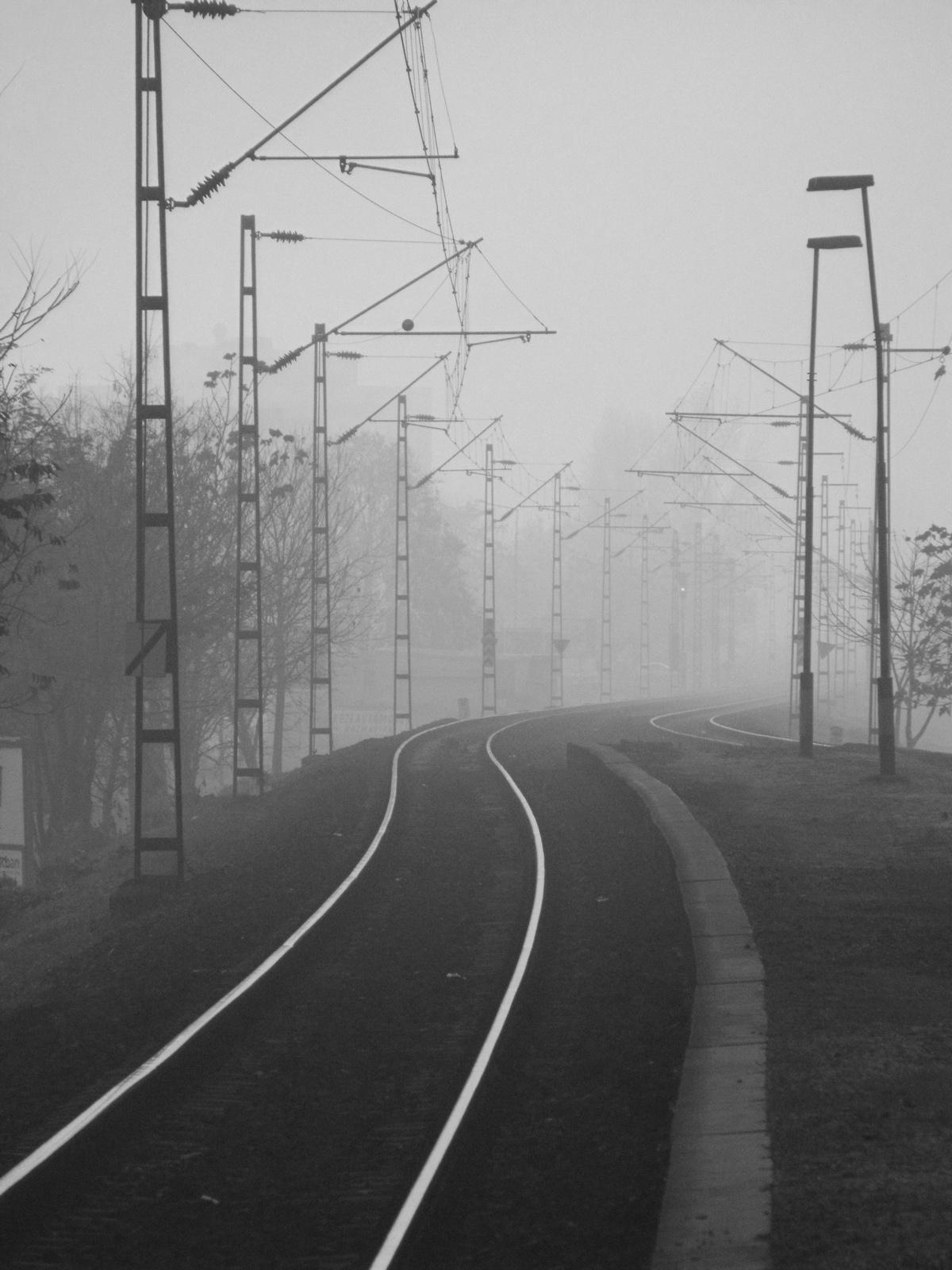 Oszlopok, sínek a ködben...