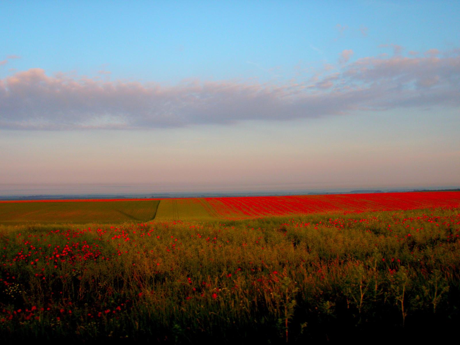 Magyar tájkép