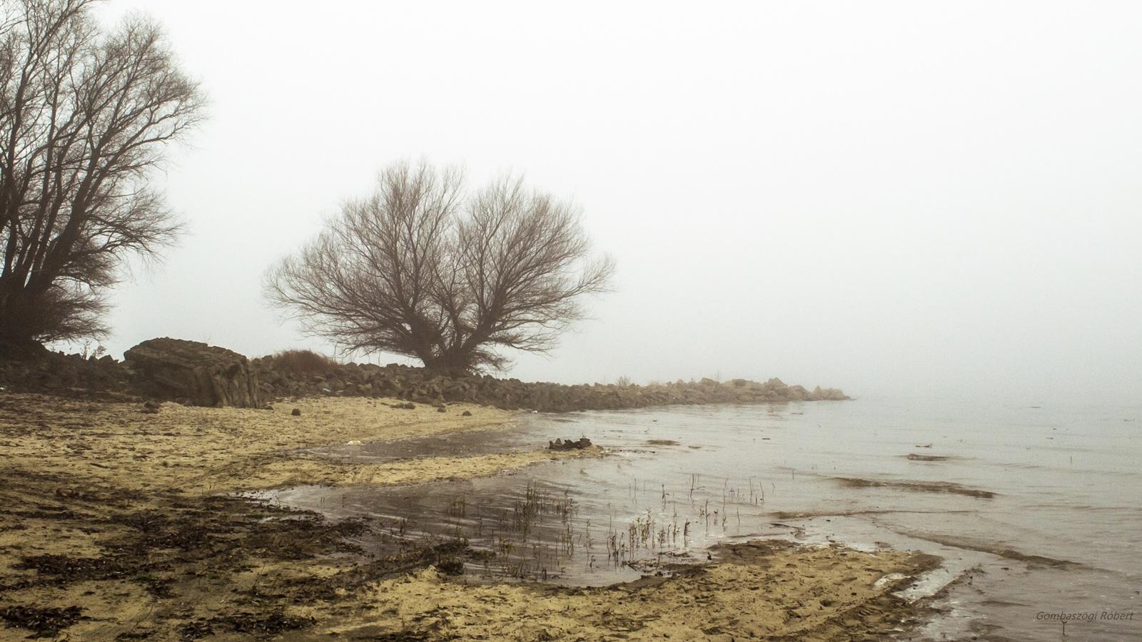 Ködös part