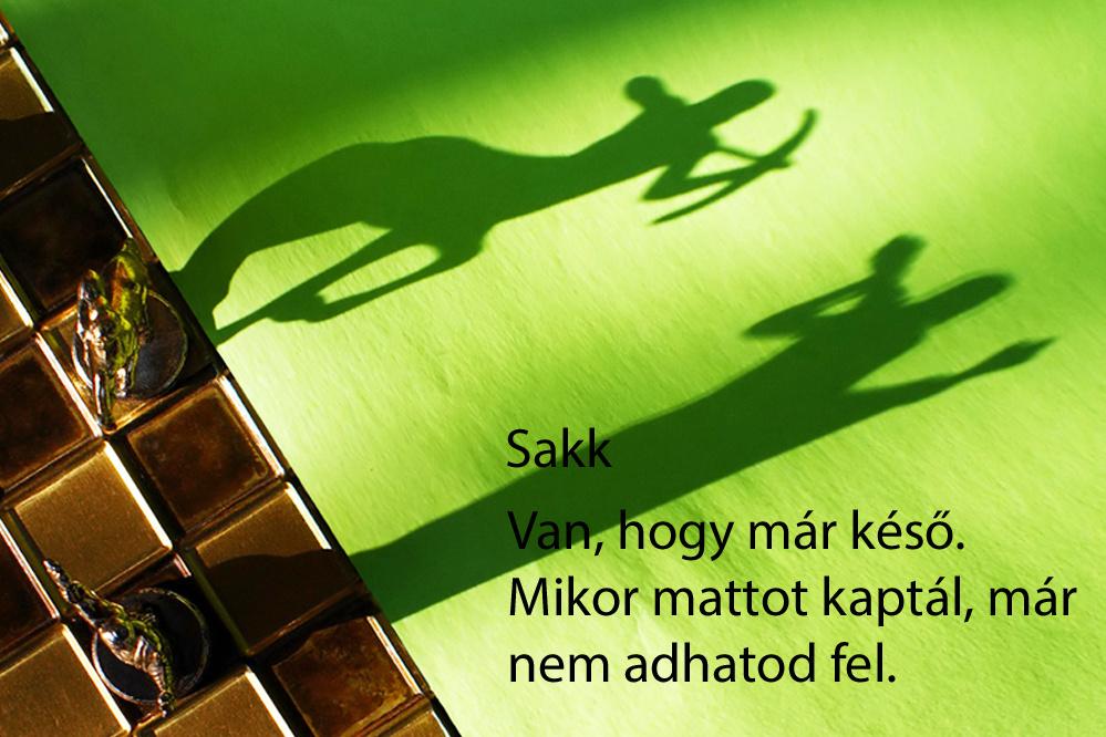 haikuk 29