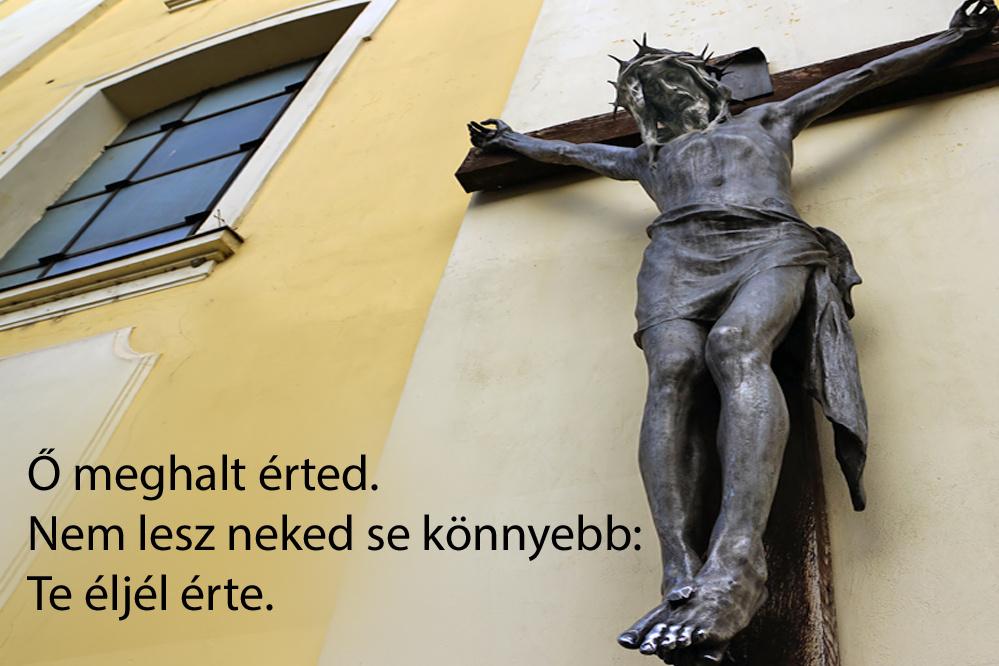 haikuk 81