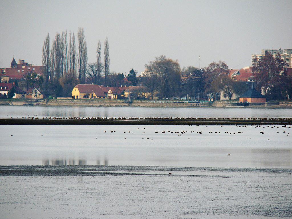 Tata, a tó túloldalán