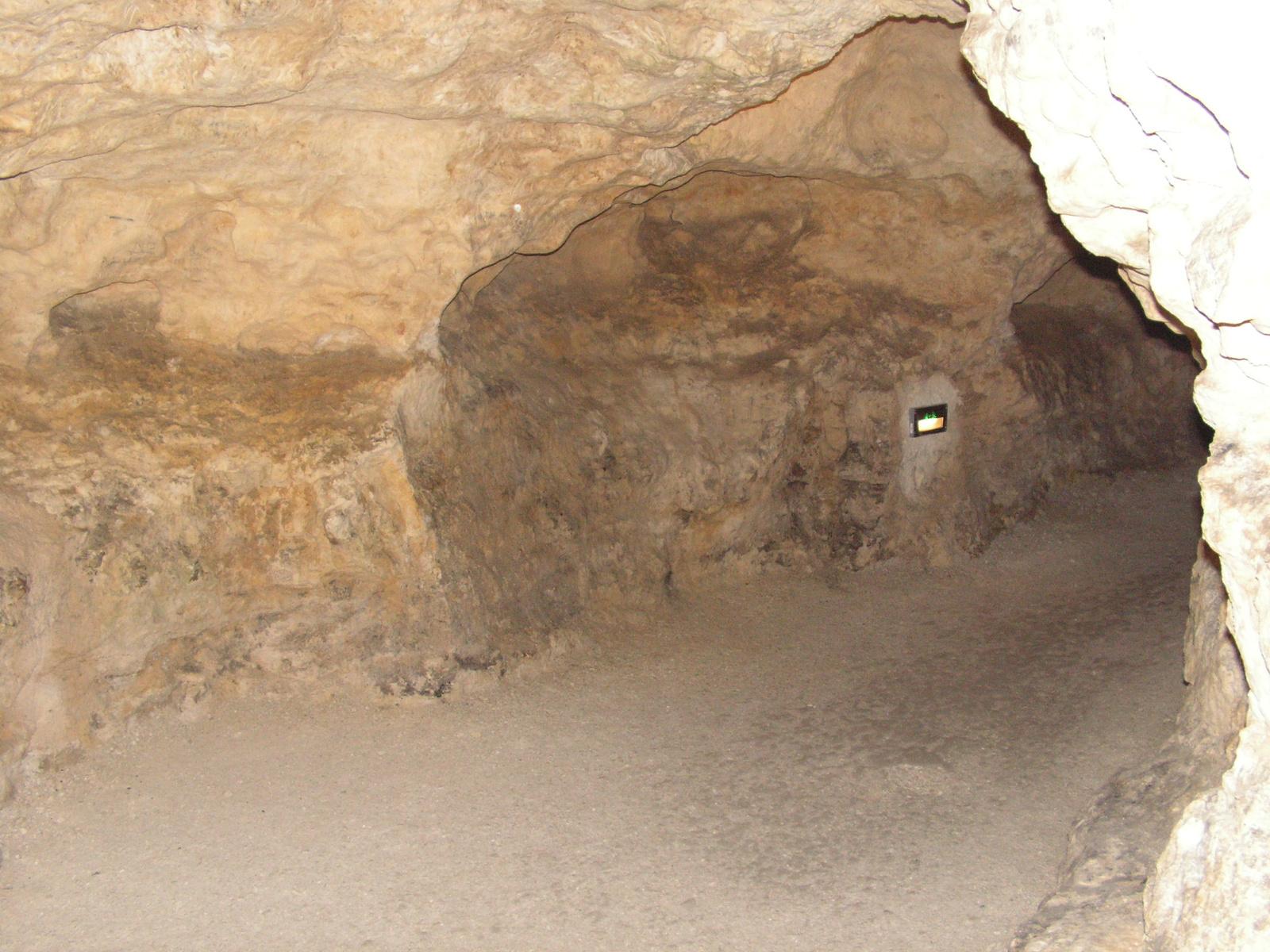 Tapolca, a tavasbarlang, SzG3