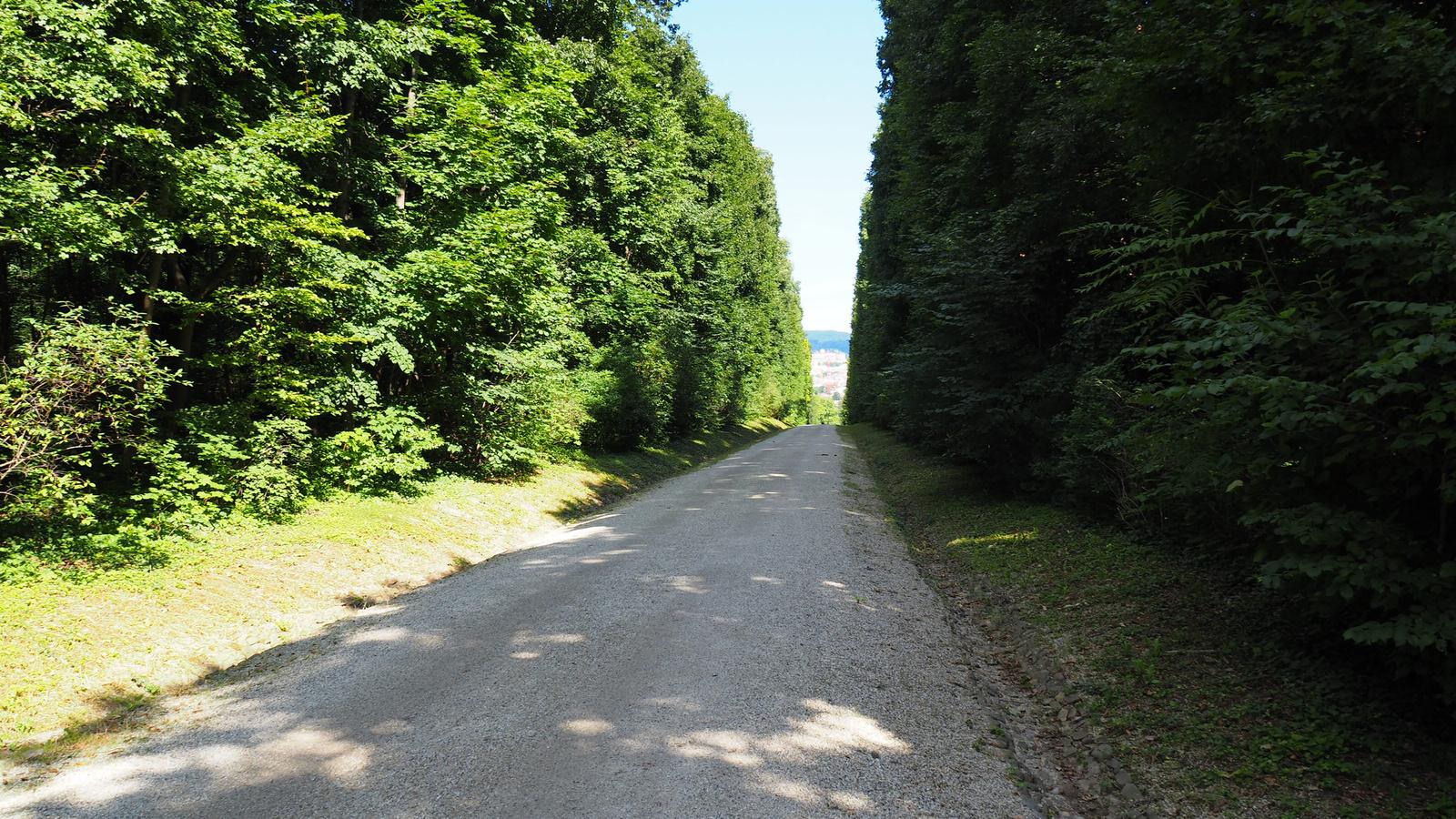 Bécs, Schönbrunn, kastélypark, SzG3