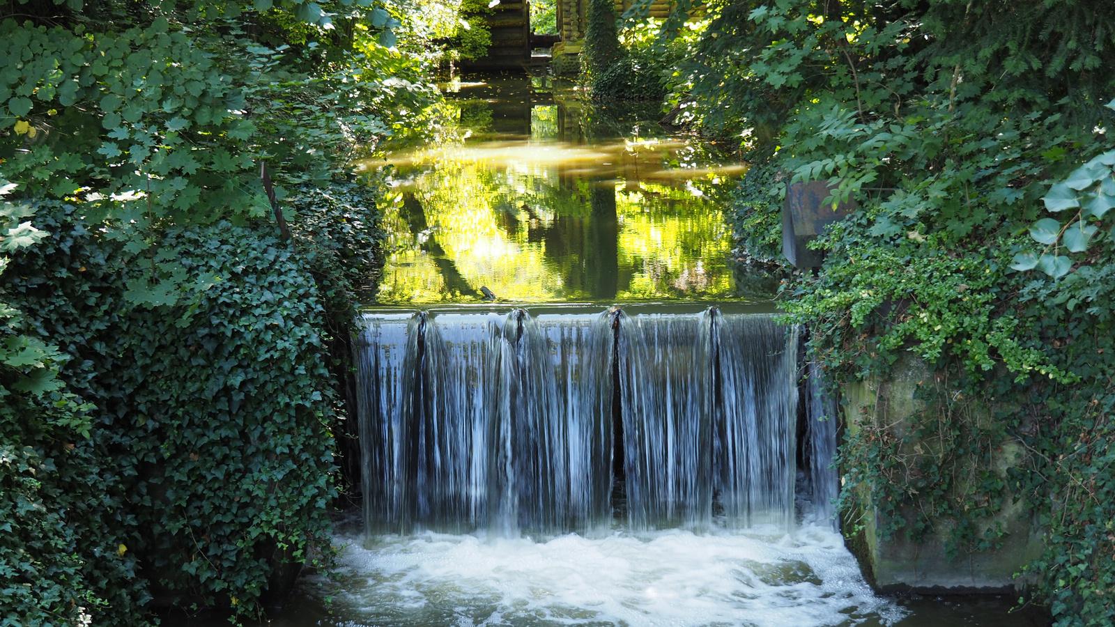 Magyarország, Vácrátót, a Botanikus kert, SzG3