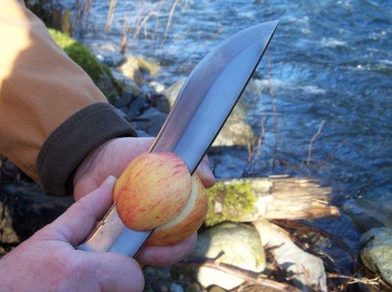 Kesportal: apple - indafoto.hu