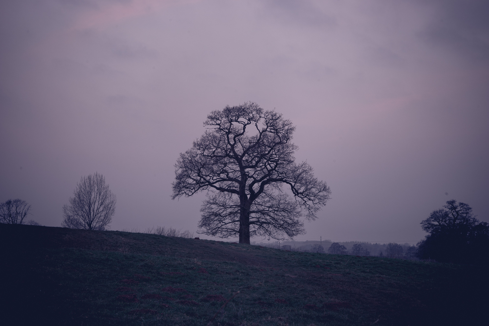 Kenilworth castle-2