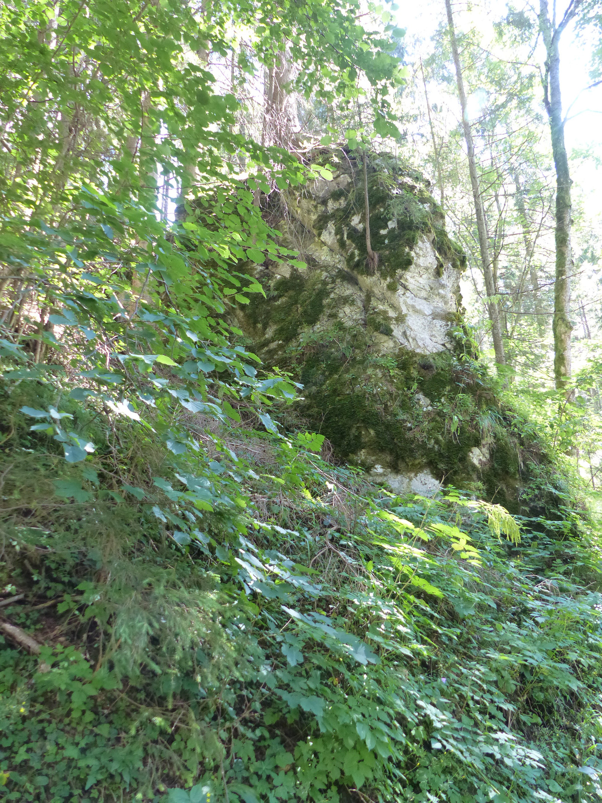 Demänovská Dolina, Jaskyňa Slobody, feljárat a barlanghoz, SzG3