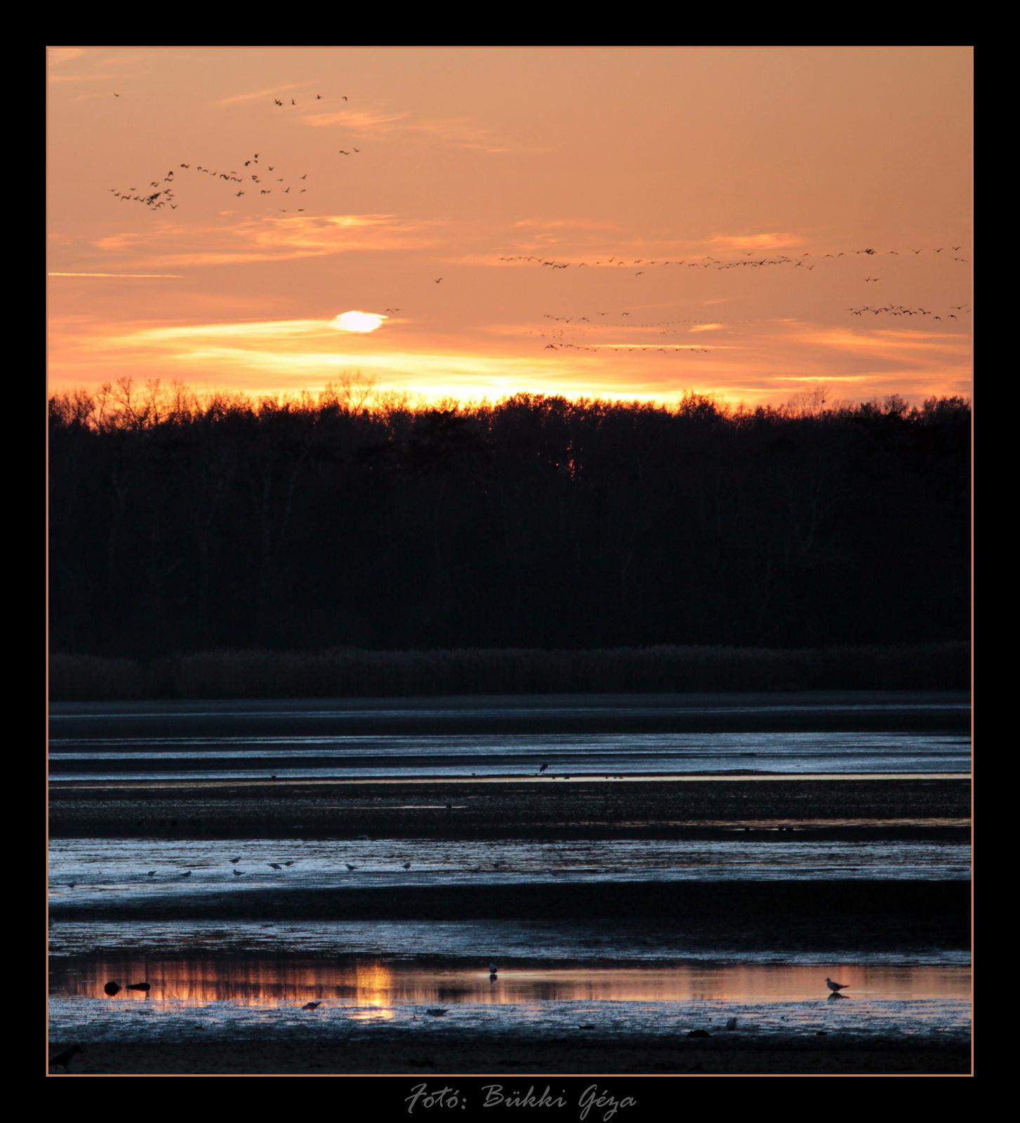 Madársokadalmi naplemente