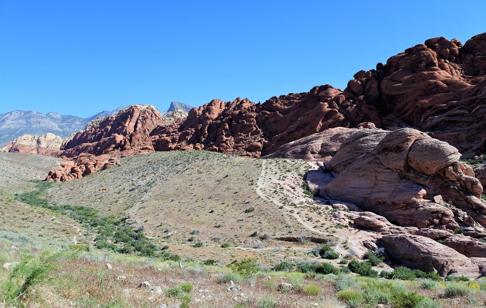 Vörös sziklák