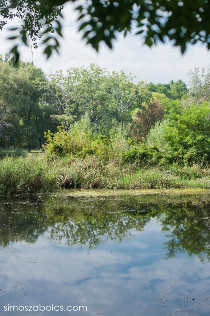 Göd - Feneketlen tó