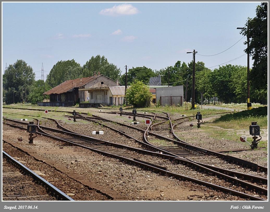 Szeged-Rókus 5