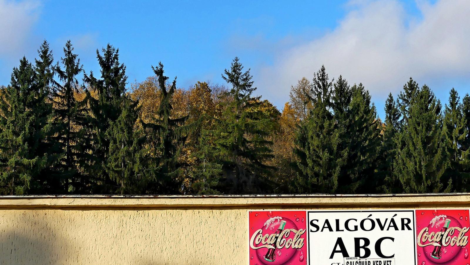 01 Salgóbányán ősszel